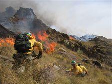 La Junta destina más de 4,2 millones de euros en ayudas para la prevención y control de incendios forestales