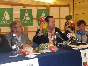 Asaja solicita la declaración de zona catastrófica para toda Andalucía