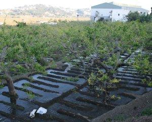 La agricultura de regadío en riesgo de abandono por los incrementos acumulativos de la factura energética