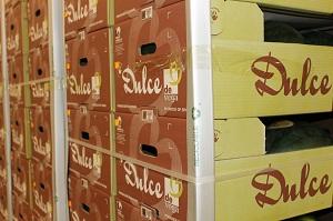 Vegacañada comienza ya la comercialización de melón y sandía, un año más bajo su marca 'Dulce de Vega'