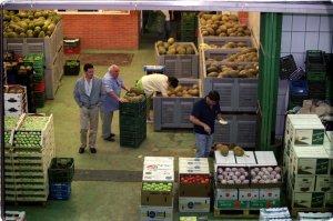 Evolución positiva de la exportación española de frutas y hortalizas en el primer trimestre de 2012