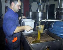 Andalucía podrá almacenar más de 83.400 toneladas de aceite