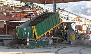 Las cooperativas de aceite de oliva de Faeca estiman una bajada de producción en Andalucía superior al 50% en la próxima campaña