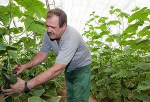 Coag pide a Hacienda que adapte la fiscalidad agraria a las circunstancias excepcionales