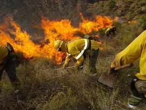La campaña de extinción de incendios en la provincia de Almería se cierra con 847,7 hectáreas quemadas