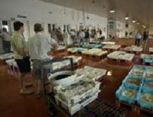 Almería incrementa un 45,5% el valor de sus exportaciones de pescado entre enero y julio pasados