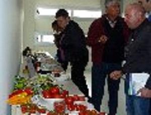 """Tecnova organiza una degustación con productos hortofrutícolas ante representantes de la cadena de alimentación de """"Marks & Spencer"""""""