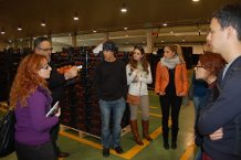 Hortyfruta muestra el sector hortofrutícola andaluz a alumnos extranjeros del Máster en Gestión Internacional