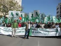 Asaja-Andalucía en busca de un plan estratégico que mitigue  la crisis del sector agrícola