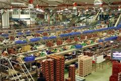 La Junta ha gestionado en 2012 casi 2.100 millones de euros para impulsar la mejora del sector agrario andaluz