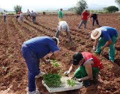 Amfar presenta la convocatoria anual de formación online en www.plazasenred.es