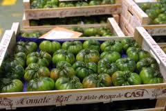 La IGP Tomate La Cañada protagoniza una degustación saludable en el Centro Deportivo We de Granada
