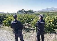 Asaja Granada reclama a los ayuntamientos que instauren guarderías rurales para atajar los robos en el campo