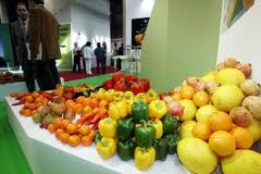 El Observatorio del Precio de los Alimentos aprueba recomendaciones  sobre los canales cortos de comercialización