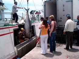 Andrés Hermida valora las iniciativas del proyecto Fedepesca-Innova para poner en valor el papel de las mujeres en el sector pesquero