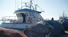 Andrés Hermida defiende la trazabilidad de los productos pesqueros a través de una pesca sostenible y un mercado responsable