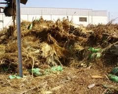 El comité ejecutivo de Asaja-Almería expresa su preocupación por la falta de soluciones en higiene rural