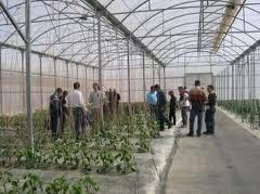 La Junta de Andalucía imparte en La Mojonera un curso de fumigador para aplicadores de fitosanitarios