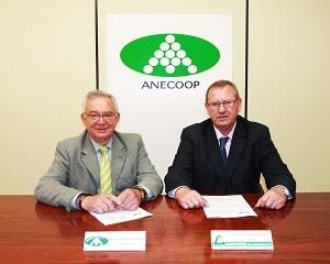 Camposol integrará al cien por cien su gestión  empresarial dentro de Anecoop