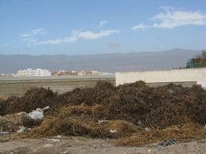 Los agricultores de Almería cumplen con la Ley de Sanidad Vegetal