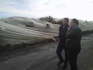Asaja solicita agilidad en la puesta en marcha de medidas para los agricultores afectados por las lluvias y el granizo