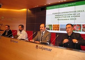 La Junta ha aprobado en los últimos cuatro años casi 140 millones de euros para los agricultores de las OPFH de Almería