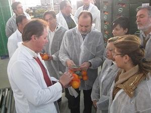 La SAT Cítricos del Andarax obtiene 777.000 euros en ayudas de fondos operativos para mejorar su producción y comercialización