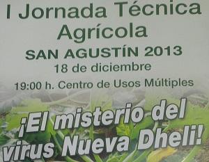 San Agustín acoge sus primeras jornadas técnicas agrícolas en las que se hablará del virus 'New Dheli'
