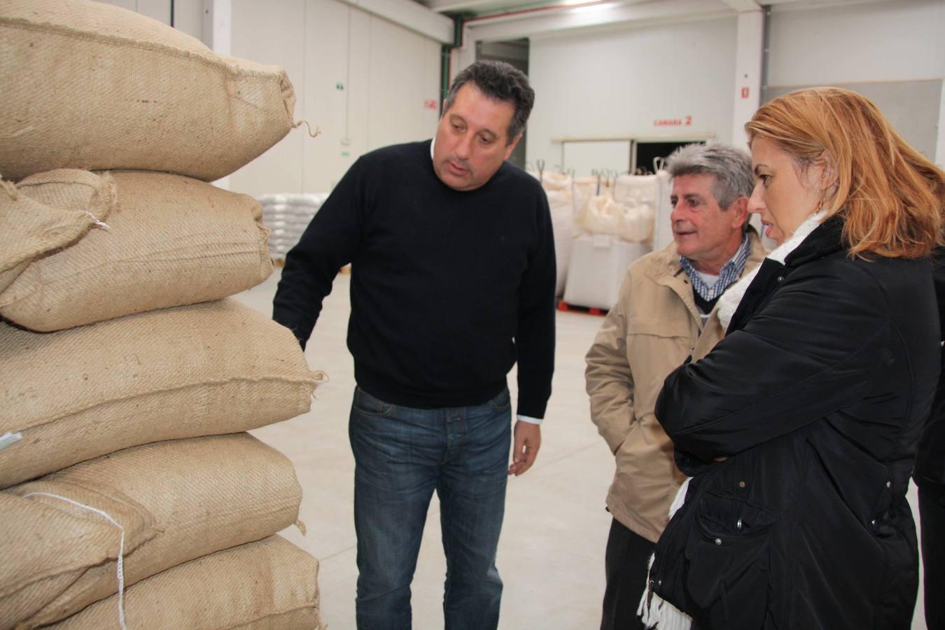Una empresa familiar de Almería lidera la comercialización de almendra nacional