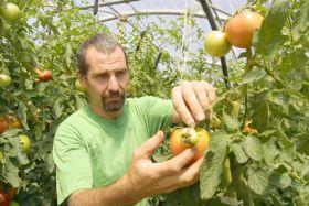 Mejora el saldo de comercio exterior en el sector agroalimentario