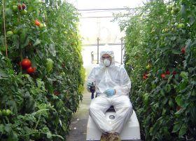 El Gobierno apuesta por la ordenación de los fitosanitarios