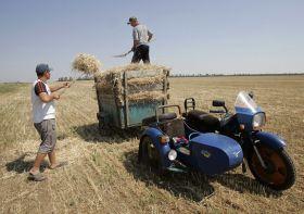Los mercados agrícolas, preocupados por la crisis en Ucrania