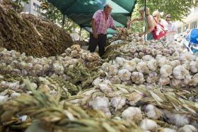 El patrimonio agrario, reivindicado por los científicos