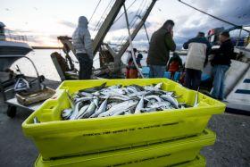 El Gobierno impulsará la igualdad entre hombres y mujeres en el sector pesquero