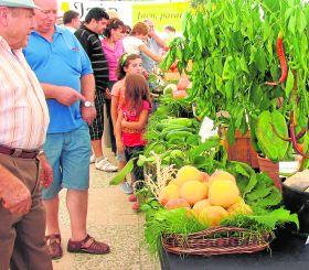 IDEAL, Ecovalia y la Diputación de Granada organizan una Jornada sobre Producción Ecológica