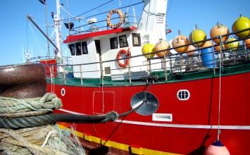 Se consigue un aumento de la cuota de boquerón mediante un acuerdo de intercambio con Portugal