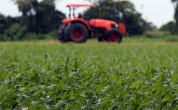 La Junta recibe más de 640 propuestas de ciudadanos y entidades relativas a la Ley de Agricultura y Ganadería