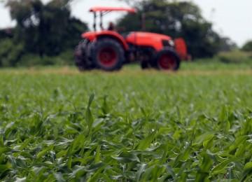 El Gobierno apuesta por los seguros agrarios como herramienta fundamental de la política agraria