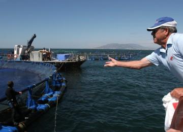 Ayudas a las Organizaciones de productores de la pesca y la acuicultura por valor de 5 millones de euros