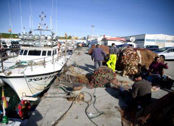 Ya es posible la expedición telemática de las licencias de caza y pesca en Andalucía