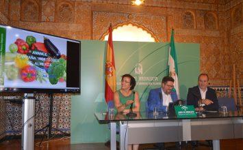 Almería vive la mejor campaña hortofrutícola de la última década