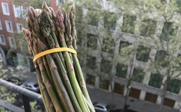 Relevantes blogs gastronómicos promocionan el espárrago de la IGP Huétor Tájar