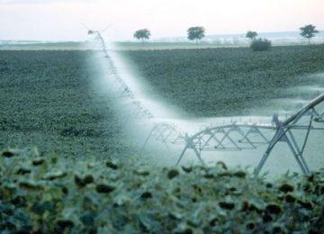 Agricultura habilita más de 96 millones de euros para modernización de los regadíos