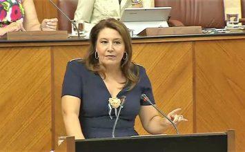 Crespo defiende en el Parlamento un Pacto Andaluz por el Agua para buscar soluciones a los problemas hídricos de Almería