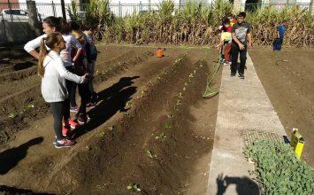 Labor agrícola, compostaje y alimentación sana se unen en un proyecto de huertos escolares