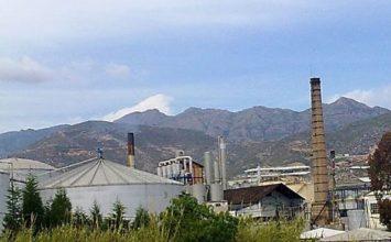 Lignokaña, un producto de la Costa en crecimiento con variados usos en agricultura y ganadería ecológicas