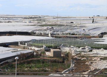 Cajamar crea una línea especial para atender los daños de los tornados