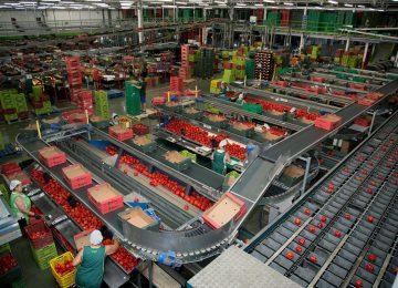 Cooperativas Agro-alimentarias pide al Gobierno rectificación en la reducción de módulos que evite agravios comparativos