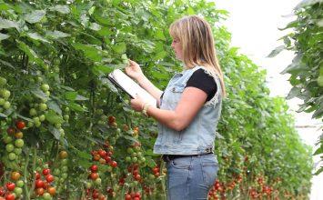 El 30% de los ingenieros técnicos agrícolas en el campo almeriense son mujeres