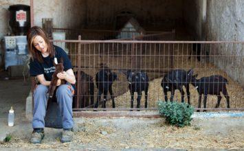 Sánchez Haro reclama que la futura PAC priorice la presencia de la mujer en la actividad agrícola y ganadera